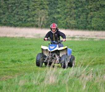 Stag on Quad Bike safari course